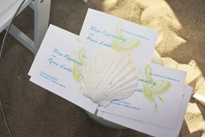 Ceremony programs, beach wedding on Miami Beach, Butterflies and shells.