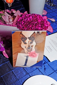 Dog in picture with table number. Hot pink carnations and midnight blue pintuck linens at Miami wedding.