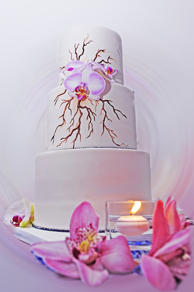 Painted three tier wedding cake with branches and white and pink orchids